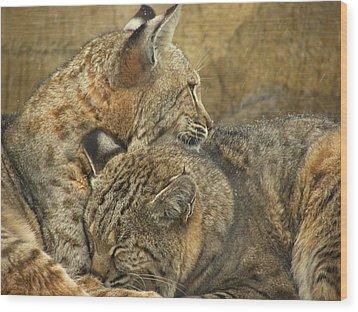 Forever Wood Print by Teresa Schomig