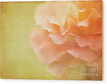 Forgiveness Wood Print by Beve Brown-Clark Photography