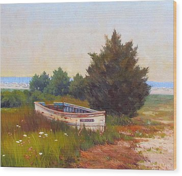Forgotten Dory Wood Print by Dianne Panarelli Miller