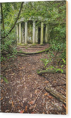 Forgotten Folly Wood Print by Adrian Evans
