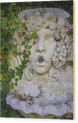 Forgotten Garden Wood Print by Laurie Perry