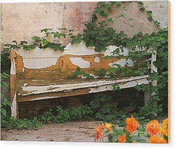 The Forgotten Garden Wood Print