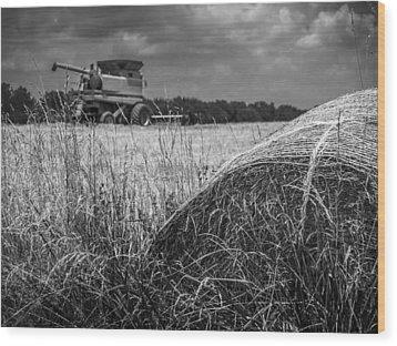 Forgotten Harvest Wood Print