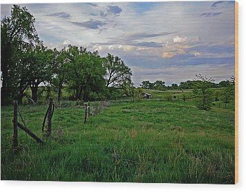 Wood Print featuring the photograph Forgotten But Not Gone by Shirley Heier