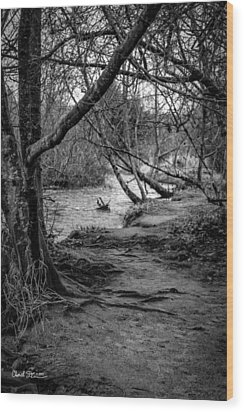 Forgotten Path Wood Print