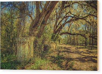 Forgotten Under The Oaks Wood Print by Lewis Mann