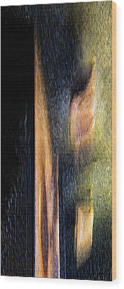 Form And Shadow Wood Print by Murray Bloom