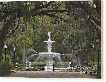 Forsyth Park Fountain - D002615 Wood Print