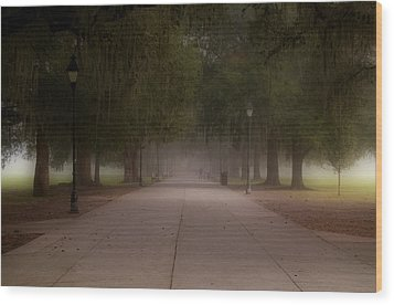 Wood Print featuring the photograph Forsyth Park Pathway by Frank Bright