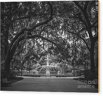Forsyth Park Wood Print by Perry Webster