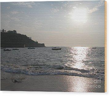 Fort Aguada Beach Wood Print