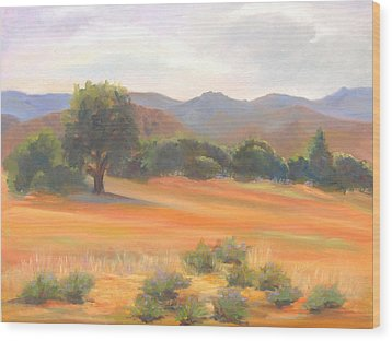 Fort Collins Foothills Wood Print by Marcy Silverstein