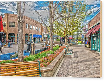 Fort Collins Wood Print by Baywest Imaging