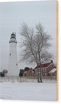 Fort Gratiot Light In Winter 5 Wood Print by Mary Bedy