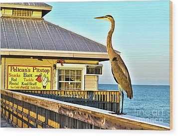 Fort Myers Beach Bird On Pier Wood Print