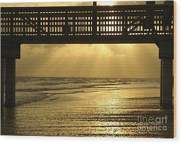Fort Myers Golden Sunset Wood Print