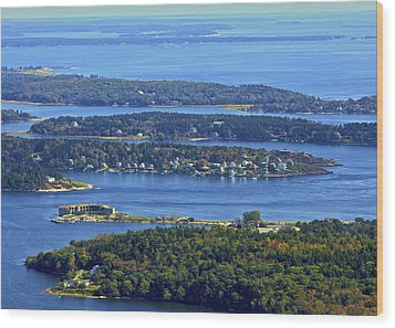 Fort Popham, Georgetown Wood Print by Dave Cleaveland