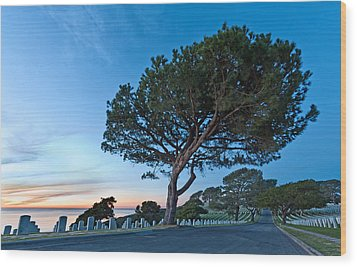 Fort Rosecrans National Cemetery Wood Print by Alexis Birkill