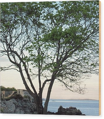 Fort Williams Twilight Wood Print by Patricia E Sundik