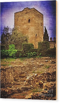 Fortress Tower Wood Print by Mary Machare