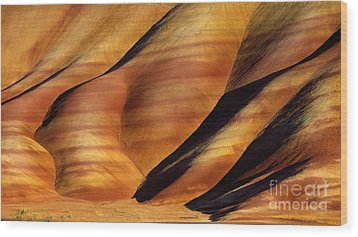 Fossilscape Wood Print by Inge Johnsson