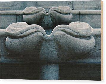 Wood Print featuring the photograph Fountain Detail by Ben Kotyuk