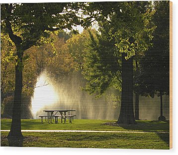 Wood Print featuring the photograph Fountain Mist by Teresa Schomig