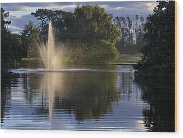 Fountain On Golf Course Wood Print by M Cohen