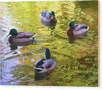 Four Ducks On Pond Wood Print by Amy Vangsgard