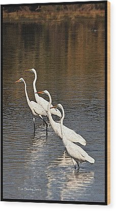 Wood Print featuring the photograph Four Egrets Fishing by Tom Janca