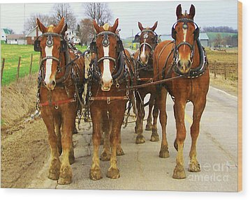 Four Horse Power Wood Print