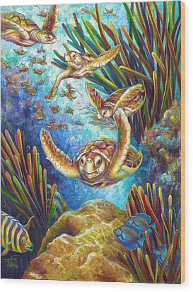 Four Loggerhead Turtles Wood Print by Nancy Tilles