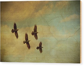 Wood Print featuring the photograph Four Ravens Flying by Peggy Collins