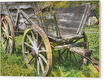 Four Wheels But No Horse Wood Print by Heiko Koehrer-Wagner