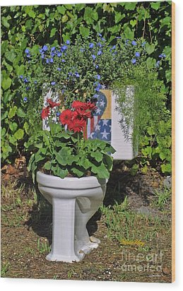 Fourth Of July Loo Wood Print