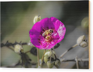 Wood Print featuring the digital art Fower And Bee by Photographic Art by Russel Ray Photos