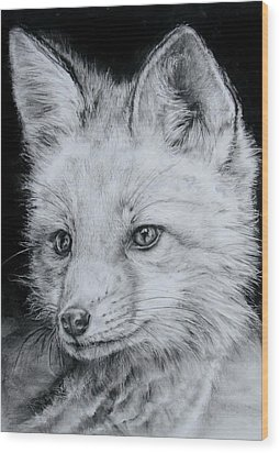 Fox Kit Wood Print by Jean Cormier