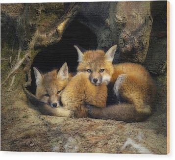 Best Friends - Fox Kits At Rest Wood Print