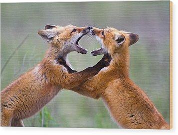 Fox Kits Wood Print by Merle Ann Loman