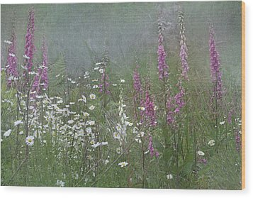 Foxgloves And Daisies Wood Print by Angie Vogel