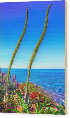 Foxtails On The Pacific Wood Print by Jim Carrell