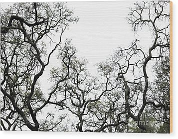 Fractal Branches Wood Print by Theresa Willingham
