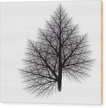 Fractal Essence Of A Tree Wood Print
