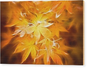 Fractal Gold 6664 Wood Print by Timothy Bischoff