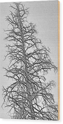 Fractal Tree Abstract Wood Print by Steve Ohlsen