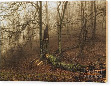 Fractured In Fog Wood Print