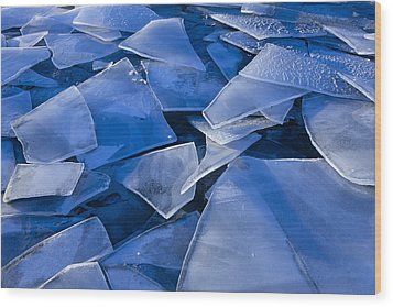 Fractured Surface Ice Drifted To The Wood Print by John Hyde