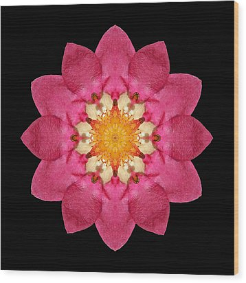 Fragaria Flower Mandala Wood Print