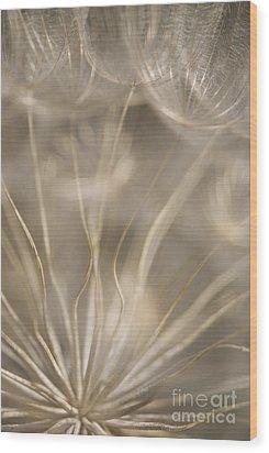 Fragile Wood Print by Anne Gilbert