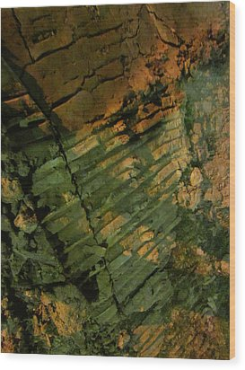 Fragility Wood Print by Guy Ricketts